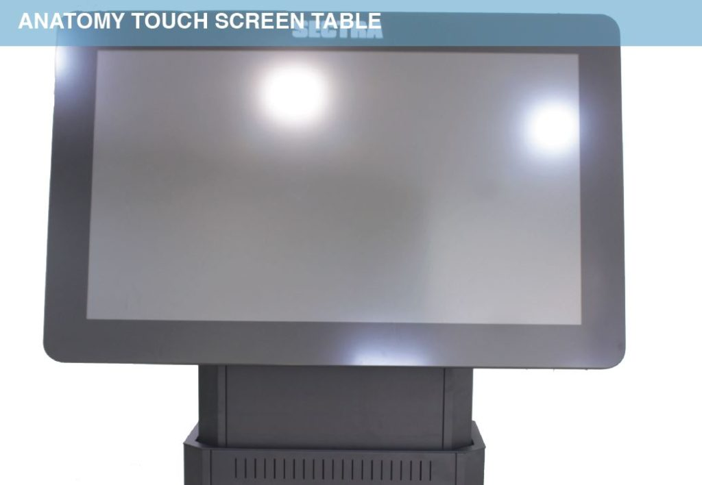 Anatomy Touch Screen Table