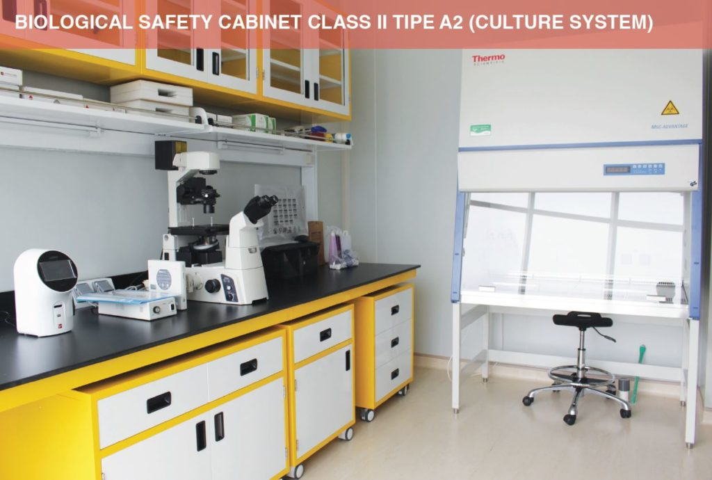 Biological Safety Cabinet Class II Tipe A2 (Culture System)