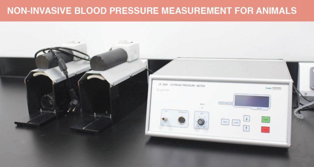 Non-Invasive Blood Pressure Measurement for Animals