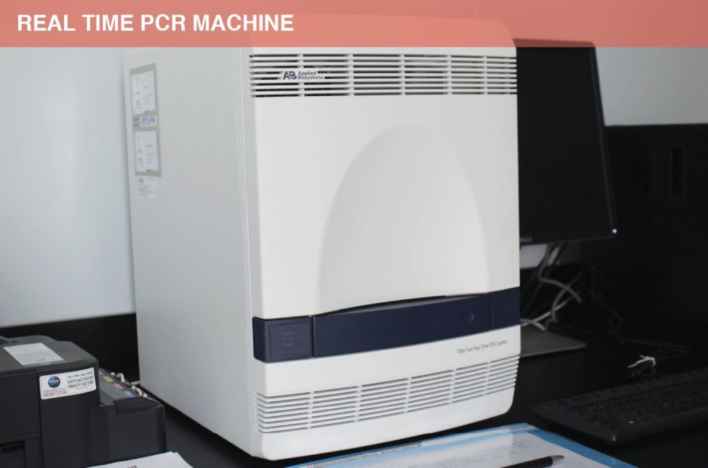 PCR Machine Real Time